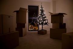 Still life of xmas tree and moving boxes Stock Photos