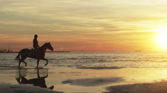 Silhouette of Rider on Horse at Beach in Sunset Light. Slow Motion. Stock Footage