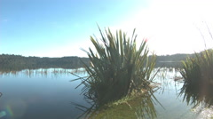 Sunshine over empty Lake Stock Footage