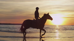 Silhouette of Rider on Horse at Beach in Sunset Light. Stock Footage