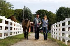 Two people with horse in paddock - stock photo