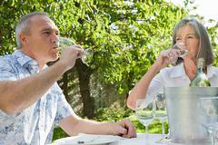 Mature couple drinking wine - stock photo