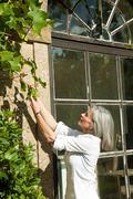 Mature woman picking grapes - stock photo
