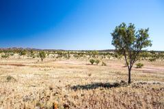 Outback Landscape Stock Photos