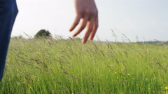 4K Male hand wading through grass sheafs in a meadow, in slow motion Stock Footage