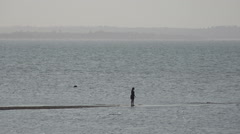 Whitsable Beach U.K Lone person walks along a narrow peninsula into the sea Stock Footage