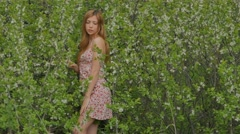 Girl in a short dress in the middle of flowering blackthorn Stock Footage