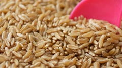 Stirring kamut Khorasan wheat with a pink spoon Stock Footage