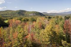 New Hampshire fall foliage Kuvituskuvat