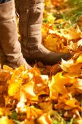 Boots amongst leaves Stock Photos