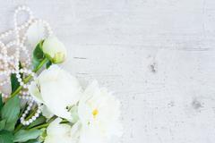 White peony flowers Stock Photos