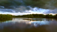 Wooded marshland under dark sky, gliding over calm the waters. Stock Footage