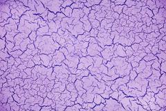 Purple cracked plaster wall background Stock Photos