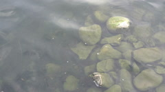 mysterious pile of rocks in water - stock footage