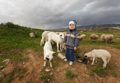 Shepherd Boy in Rural Anatolia - stock photo
