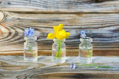 Buttercups and forget-me-nots in small glass jars Stock Photos