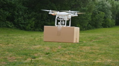 Drone delivers parcel Stock Footage