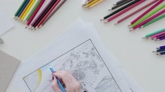 Adult coloring book, female hands coloring drawing Stock Footage