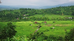 The village in the jungle and rice fields. Stock Footage