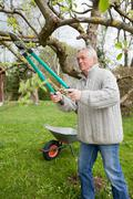Older man trimming tree in backyard - stock photo
