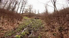 A Small Stream in the Highlands Among Several Leafless Trees Stock Footage