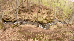 Mountain Stream Flowing Between the Trees in Forest Top View Stock Footage