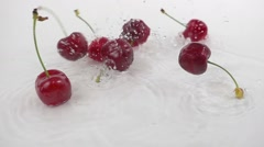 Cherries fall splashing on white slow motion Stock Footage