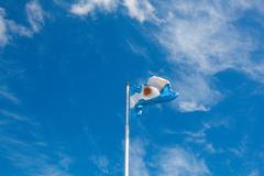 Argentinian flag, Buenos Aires, Argentina Stock Photos