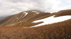 Withered Grass Swaying on Top of the Mountain Which is Covered With Snow Stock Footage
