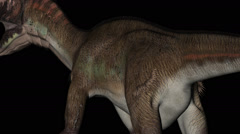 Utahraptor Dinosaur in Rotation on Black Background, detail of body Stock Footage