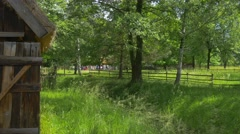 Panorama of Rural Landscape Wooden Cottages Nature Green Trees and Grass in Stock Footage
