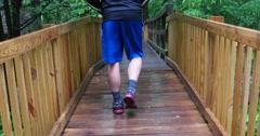 Teen Boy Walks on Foot bridge in a Forest 4k Stock Video Stock Footage