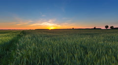 4k timelapse of beautiful summer green fields under sunset sky. - stock footage