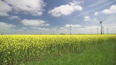Wind farm in a yellow canola field Stock Footage