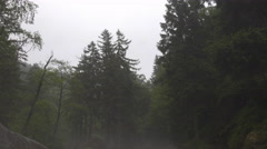 4k Fog and haze coming up at rocky Harz forest stream tilt down Stock Footage