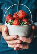 Man hands with miniature bucket with strawberry Stock Photos