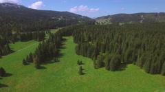 4K Alpine forest aerial shot Stock Footage