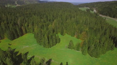 4K Swiss Jura forest park aerial shot Stock Footage