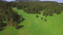 4K Mountain pasture aerial shot Stock Footage