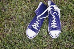 Athletic shoes - men's sneakers on a white background. Stock Photos