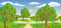 Rural landscape with apple tree - stock illustration