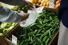 The female lays pea pods in a package Stock Photos