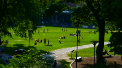 Long shot unrecognized crowd of people enjoying summer sunbathing in sun in park Stock Footage