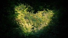 Heart-Shaped Opening In The Forest - stock footage