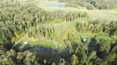 Aero Flight  Over Forest with a river - stock footage