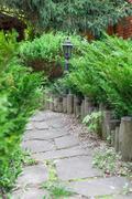 Landscape design, evergreen bushes and path - stock photo