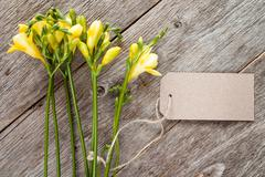 Freesias with blank tag Stock Photos
