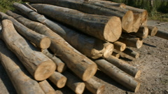 A pile of wood in the sunset Stock Footage