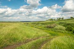 Meadow with country lane and clouds in the sky - stock photo