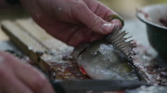 A man cleans a fresh fish on the street Stock Footage